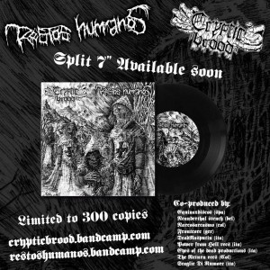 "RESTOS HUMANOS / CRYPTIC BROOD split 7"" flyer"
